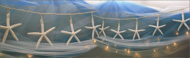 2 metre starfish strings for hire, Auckland Beach Weddings